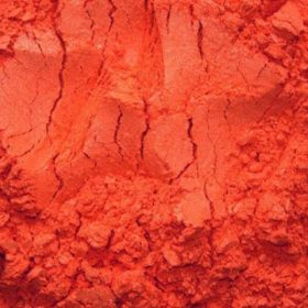 koralna500x500.jpg